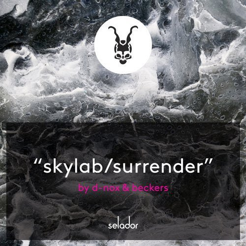 SKYLAB-SURRENDER